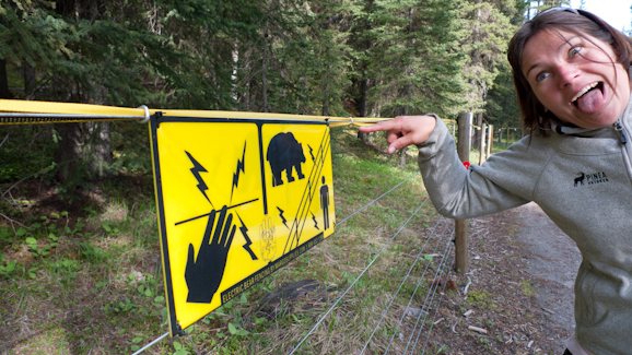 Electric Fences in Lake Louise