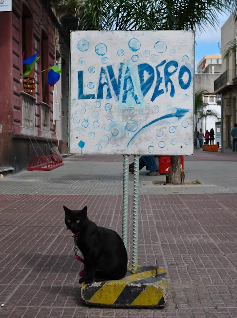 Uruguay: Montevideo - poor promotion cat