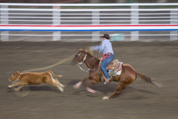 Rodeo in Cody